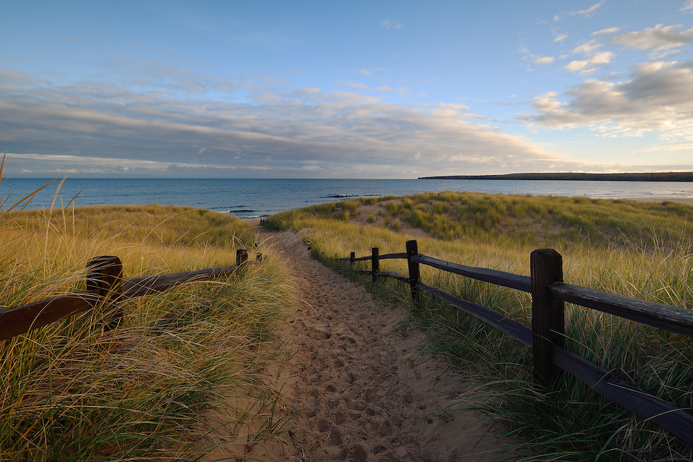 Beach grass glows in the morning sun on Lake Superior's sandy shore ~ near Au Train