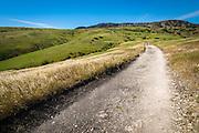 Rolling hills above Smuggler's Cove, Santa Cruz Island, Channel Islands National Park, California USA