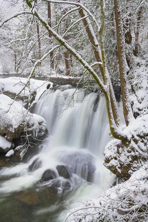 Whatcom Falls asfter fresh dusting of winter snow. Whatcom Falls City Park, Bellingham Washington