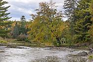 The White River (Rivière Blanche) in Gatineau, Québec, Canada