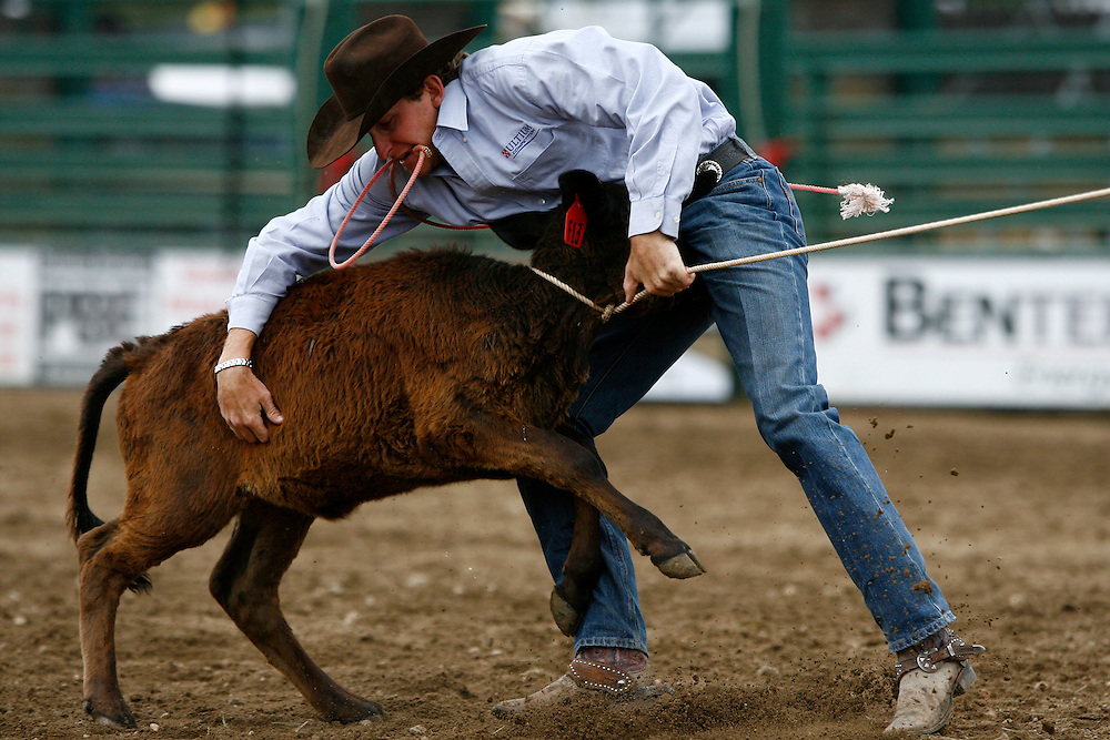 061911-Evergreen, COLORADO-evergreenrodeosun-Johnny Salvo, of Horse Springs, NM, works to tie down a calf during the Evergreen Rodeo Sunday, June 19, 2011 at the El Pinal Rodeo Grounds..Photo By Matthew Jonas/Evergreen Newspapers/Photo Editor