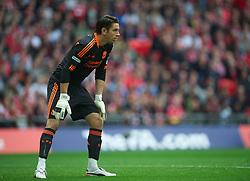 LONDON, ENGLAND - Saturday, April 14, 2012: Liverpool's goalkeeper Brad Jones during the FA Cup Semi-Final match against Everton at Wembley. (Pic by David Rawcliffe/Propaganda)