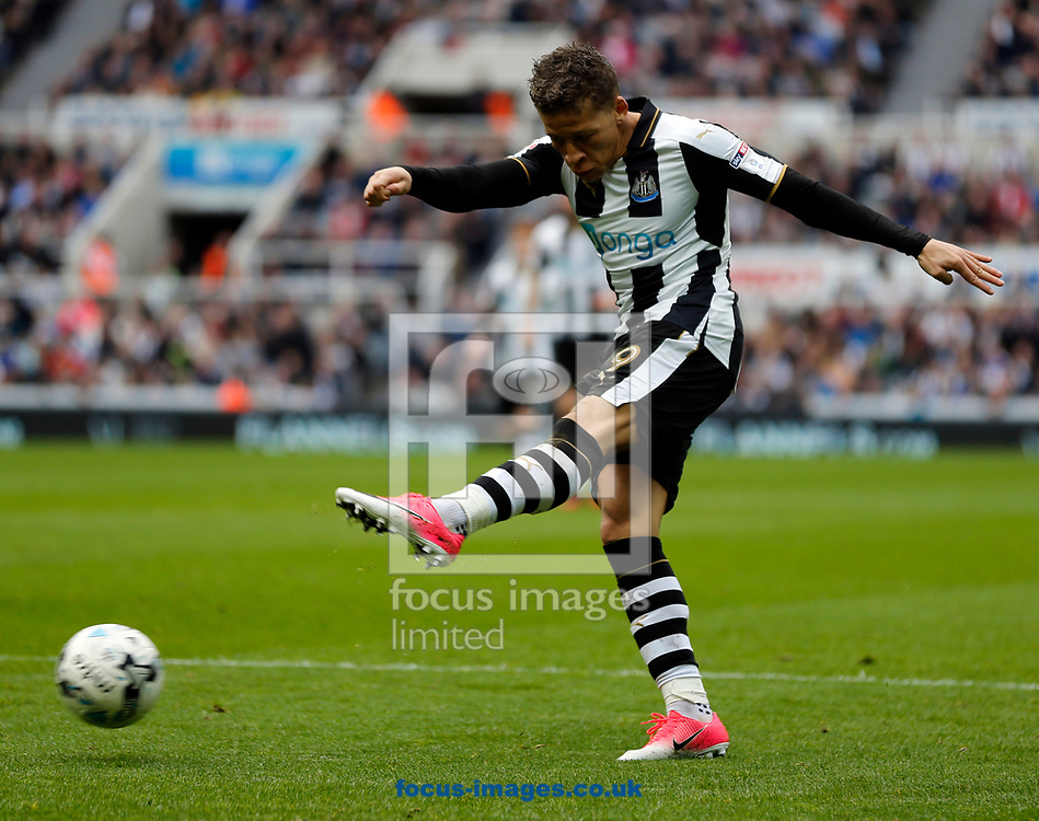 Dwight Gayle of Newcastle United shooting during the Sky Bet Championship match at St. James's Park, Newcastle<br /> Picture by Simon Moore/Focus Images Ltd 07807 671782<br /> 01/04/2017