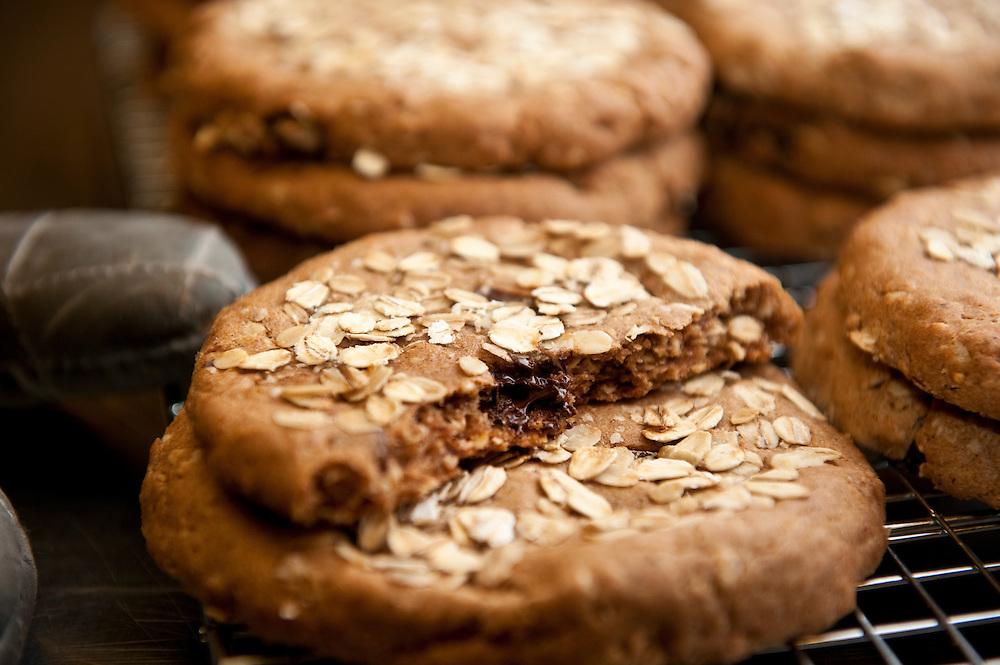 Fresh chocolate chip cookie
