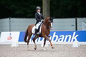 Dressage Ponys CHIO '13