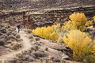 The Jem Trail Mountain Biking