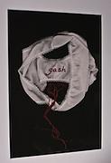 Babette Shaw<br /> Ritual Castings<br /> Archival inkjet prints &amp; fiber art