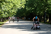 The Prater, Vienna's famous park. Father skating pushing a buggy with his twin babies.