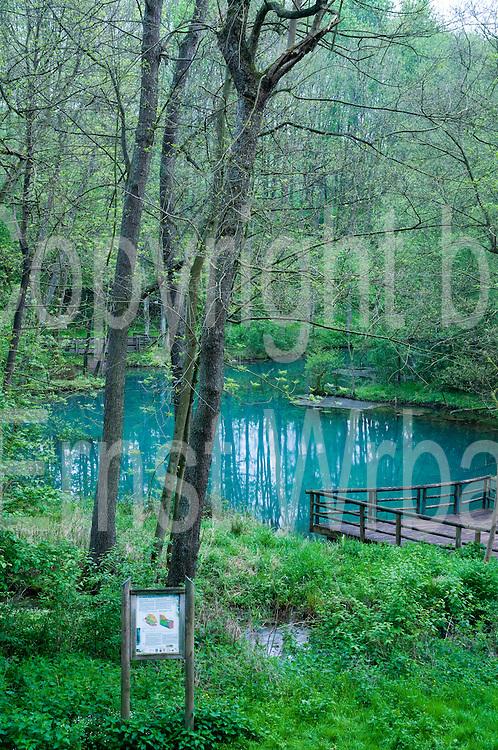 Rhumequelle, Harz, Niedersachsen, Deutschland | spa, Bad Grund, Lower Saxony, Harz, Lower Saxony, Germany