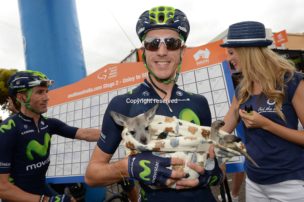 21.01.2015. Unley to Stirling. Tour Down Under cycling tour.  Movistar 2015 holds a baby kangaroo in Unley