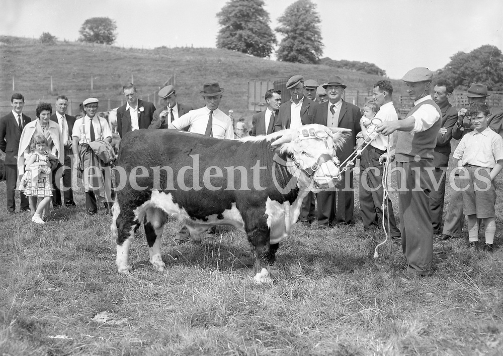 29459<br />