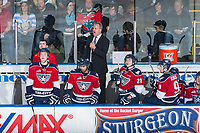 KELOWNA, CANADA - MARCH 27: Mike Williamson, head coach of the Tri-City Americans yells to players from the bench against the Kelowna Rockets on March 27, 2015 at Prospera Place in Kelowna, British Columbia, Canada.  (Photo by Marissa Baecker/Getty Images)  *** Local Caption *** Mike Williamson;