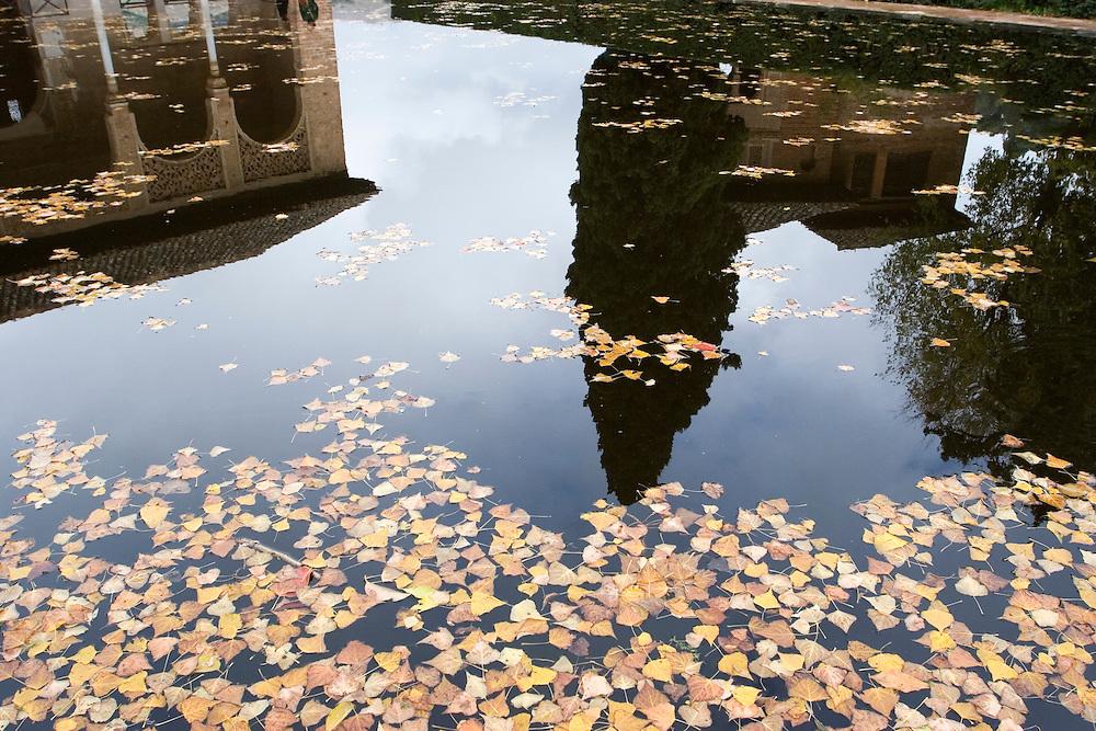 Autumn leaves on the ponds of Partal in la Alhambra.<br /> <br /> En oto&ntilde;o, las hojas ca&iacute;das de los &aacute;rboles flotan en los estanques de la zona de Partal, en la Alhambra, junto a los reflejos de la arquitectura colindante.