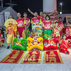 Lunar New Year Celebration 2017