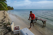 Cutting up bait for long lines for Shark capture & Research<br /> MAR Alliance is performing population assessments on Sharks, Rays, and Great Barracuda to aid with management and protection. They are collecting samples to determine methyl mercury levels.<br /> MAR Alliance<br /> Lighthouse Reef Atoll<br /> Belize<br /> Central America