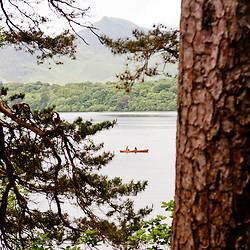 A small boat in the Windermere lake seen throught the flourishing foliage of the Lake district vegetation
