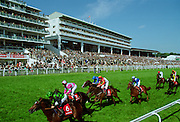 Racehorses on Derby Day at Epsom Racecourse, Surrey UK