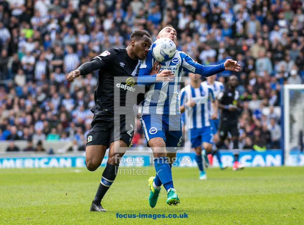 Ryan Nyambe of Blackburn Rovers and Jiri Skalak of Brighton &amp; Hove Albion during the Sky Bet Championship match at the American Express Community Stadium, Brighton and Hove<br /> Picture by Liam McAvoy/Focus Images Ltd 07413 543156<br /> 01/04/2017