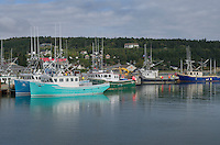 Fishing Boats, Bay of Fundy, Alma, New Brunswick
