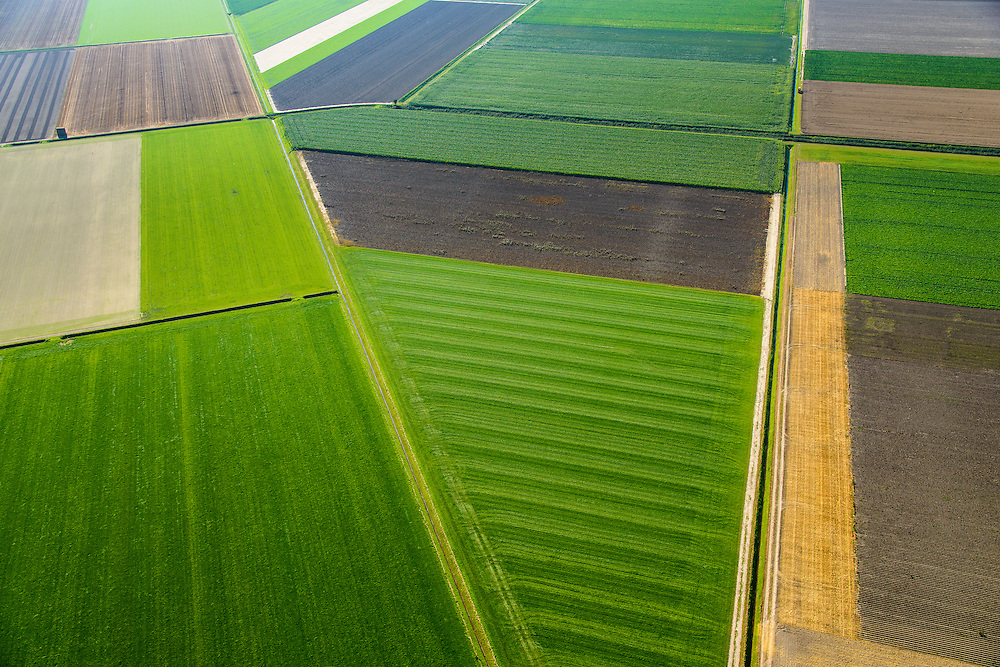 Nederland,  Noordoostpolder, Marknesse, 27-08-2013;<br /> Weilanden en akkers, landerijen ten oosten van Marknesse<br /> Meadows and fields, farmlands east of Marknesse.<br /> luchtfoto (toeslag op standaard tarieven);<br /> aerial photo (additional fee required);<br /> copyright foto/photo Siebe Swart.