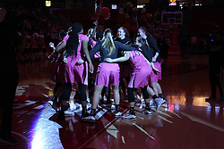 NORMAL, IL - February 10: Redbird Team during a college women's basketball Play4Kay game between the ISU Redbirds and the Indiana State Sycamores on February 10 2019 at Redbird Arena in Normal, IL. (Photo by Alan Look)