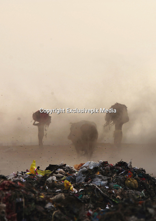 New Delhi, India - <br /> <br /> Garbage Mountain<br /> <br /> Just a few miles from the famous Akshardham temple, where tourists flock to see the structure's sandstone and marble work, the 29-hectare, slum-surrounded Ghazipur landfill in east Delhi seems a world apart. Each day hundreds of mainly migrant workers earn a meager living at the landfill by collecting recyclable material like plastic, metal and even hair to sell. The dump is the last port of call for Delhi's trash, having already been picked through by other waste collectors who collect bags of garbage directly from homes. Delhi is home to three landfills where around 6,000 tons of trash is dumped daily. Studies have shown that living near a landfill increases the risk of cancer, birth defects and asthma.<br /> <br /> Photo shows: Rag pickers carry heaps of waste in a dust storm at the Ghazipur landfill.<br /> &copy;Chinky Shukla/Exclusivepix Media
