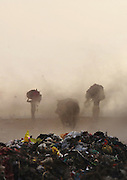 New Delhi, India - <br /> <br /> Garbage Mountain<br /> <br /> Just a few miles from the famous Akshardham temple, where tourists flock to see the structure's sandstone and marble work, the 29-hectare, slum-surrounded Ghazipur landfill in east Delhi seems a world apart. Each day hundreds of mainly migrant workers earn a meager living at the landfill by collecting recyclable material like plastic, metal and even hair to sell. The dump is the last port of call for Delhi's trash, having already been picked through by other waste collectors who collect bags of garbage directly from homes. Delhi is home to three landfills where around 6,000 tons of trash is dumped daily. Studies have shown that living near a landfill increases the risk of cancer, birth defects and asthma.<br /> <br /> Photo shows: Rag pickers carry heaps of waste in a dust storm at the Ghazipur landfill.<br /> ©Chinky Shukla/Exclusivepix Media