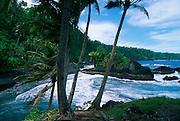 Black Sand Beach, Savaii, Samoa<br />