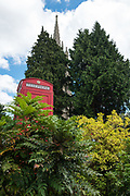 """Marlow, Bucks . United Kingdom. <br /> <br /> General View, GV. """" Red Telephone Pay phone Box, looking up at the All Saints Church  Bell Tower. <br /> <br /> <br /> Thursday  15/06/2017<br /> <br /> <br /> [Mandatory Credit. © Peter SPURRIER,]"""