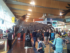 Wellington-Hobbit eagle falls from ceiing at airport