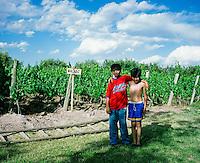 Young boys stand in front of Malbec grape vines at Finca La Heredad in the Luján de Cuyo area of Mendoza, Argentina. The farm's vines surround the boutique hotel Club Tapiz.
