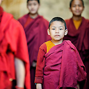 Tibetan buddhist monk boy in red robe poses for portrait in Northern India