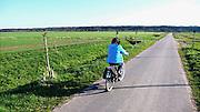 Nederland, Ubbergen, 18-4-2010Een vrouw rijdt op haar electrische fiets door de Ooijpolder.Vanwege het vliegverbod ten gevolge van de vulkanische as uit IJsland is de lucht strak blauw, zonder condensstrepen van vliegtuigen.Foto: Flip Franssen/Hollandse Hoogte