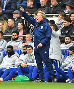 Cardiff City manager Neil Warnock pointing during the Premier League match between Cardiff City and Chelsea at the Cardiff City Stadium, Cardiff, Wales on 31 March 2019.