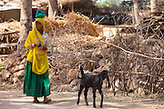 Indian woman with goat at farm smallholding at Kutalpura Village in Rajasthan, Northern India