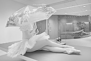 Classic ballerina at the new Edward P. Evans Hall   Yale School Of Management Yale University.