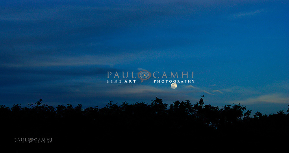 fine art photography by paul camhi