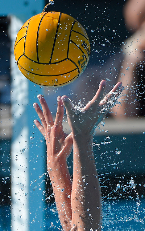 The Riverside City College Tigers men's water polo team beat the Saddleback College Gauchos 23-22 in overtime during the Orange Empire Conference Water Polo Championships held at Golden West College on Thursday, November 7, 2014 in  Huntington Beach, Calif.  Photo by Amy Gaskin