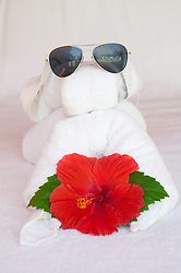 Towel Sculpture with Habiscus flower and Sunglasses, Jamaica
