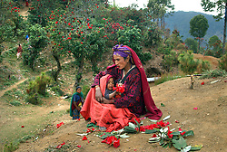 A Nepalese woman and her baby eat the sweet national flower of Nepal outside of a Maoist cutlrual program where thousands of villagers come to hear  traditional song and dance as well as a political speech by one fo the local communist committee members. The Maoists are seeking to overthrow the monarchy and set up a democraticlaly elected Communist regime. Since 1996, over 11,000 people have been killed in the brutal conflict. (Ami Vitale