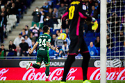 Ruben Castro of Real Betis celebrates his goal during the Spanish championship Liga football match between RCD Espanyol and Real Betis Balompie on March 31, 2017 at the RCDE stadium in Barcelona, Spain - Photo Spain ProSportsImages / DPPI / ProSportsImages / DPPI
