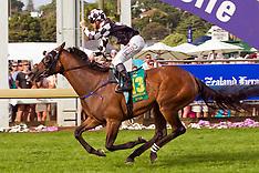 Auckland-Racing- Zabeel Classic at Ellerslie
