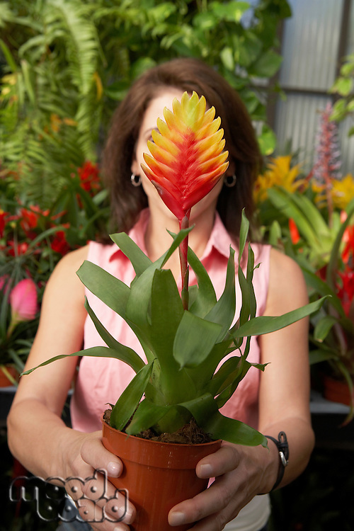 Woman Holding Out Tropical Plant