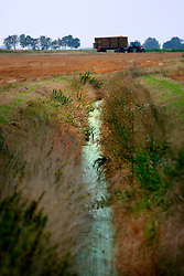 UK ENGLAND NORFOLK LAKESEND 7AUG06 - Drainage canal dividing agricultural land on the Norfolk and Cambridgeshire border...jre/Photo by Jiri Rezac..© Jiri Rezac 2006..Contact: +44 (0) 7050 110 417.Mobile:  +44 (0) 7801 337 683.Office:  +44 (0) 20 8968 9635..Email:   jiri@jirirezac.com.Web:    www.jirirezac.com..© All images Jiri Rezac 2006 - All rights reserved.
