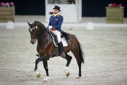Visser Tommie, (NED), Bojengel<br /> CDI Roosendaal 2015<br /> © Hippo Foto - Leanjo de Koster<br /> 04/12/15