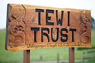 AHU16 - Tewi Trust