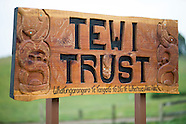 AHU16 - Tewi - Pre Field Day