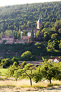Landschaft mit Streuobstwiesen und Schloss Zwingenberg am Neckar, Baden-Württemberg, Deutschland   Landscape and Castle Zwingenberg am Neckar, Baden-Wurttemberg, Germany