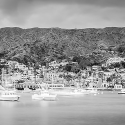Catalina Island Avalon Bay black and white photo with Avalon city skyline, boats, mountains, and hillside buildings. Santa Catalina Island is a popular travel and vacation destination off the coast of Southern California in the United States.