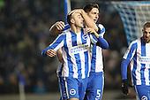 Brighton and Hove Albion v Fulham 261116